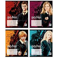 Зошит 24 клітинка Harry Potter, КІТЕ (16/320)