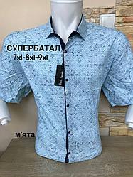 Супербатальна сорочка з коротким рукавом  P.Smith