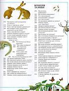 Велика дитяча енциклопедія (Рідна мова), фото 8