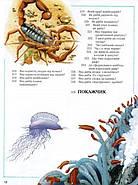 Велика дитяча енциклопедія (Рідна мова), фото 9