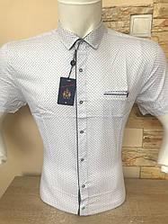 Приталена сорочка з коротким рукавом ANG  (50370)