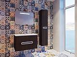 Шафа в ванну кімнату вологостійка Prato PrP-170 дуб трюфель, фото 5