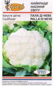 Семена капуста Цветная Палла ди Неве Коуел 10 г. Очень плотная