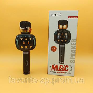 Беспроводной микрофон для караоке DM Karaoke WS 2911