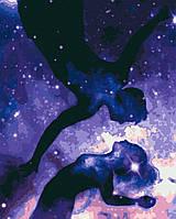 Картина по номерам, два вселенные (40х50) (RB-0067)