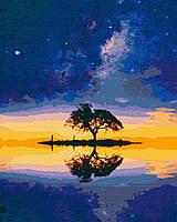 Картина по номерам, Звездный остров (40х50) (RB-0071)
