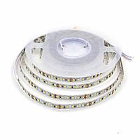 """Светодиодная LED лента гибкая 12V PROLUM™ IP20 2835\120 Series """"PRO"""", Холодный-белый (9000-10000К)"""