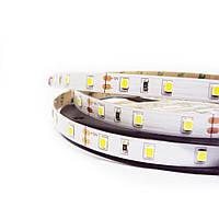 """Светодиодная LED лента гибкая 12V PROlum ™ IP20 2835\60 Series """"SG"""", Белый (5500-6000К)"""
