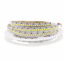 """Светодиодная LED лента гибкая 12V PROlum™ IP20 2835\240 Series """"SG"""", Белый (5500-6000К)"""