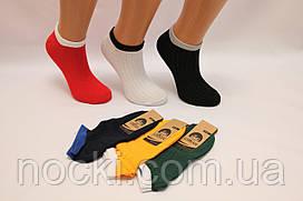 Женские носки короткие с хлопка в рубчик КЛ   цветные в рубчик