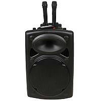 Портативная беспроводная колонка OLUTION BT 15 + 2 микрофона