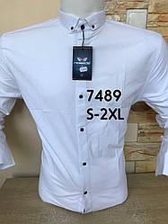 Білі сорочка з довгим рукавом Noseda  - 7489