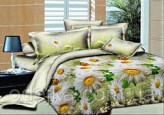 Двуспальный комплект постельного белья евро 200*220 хлопок  (13488) TM KRISPOL Украина