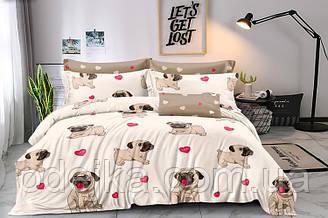 Двуспальный комплект постельного белья евро 200*220 хлопок  (16032) TM KRISPOL Украина