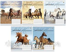 """Тетрадь 60_листов линия """"YES"""" / Wild Horses"""