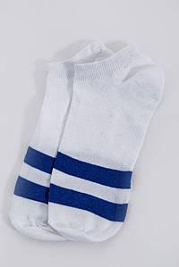 Шкарпетки жіночі 131R1920 колір Біло-синій
