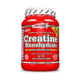 Креатин Amix Nutrition Creatine monohydrate, 1 кг
