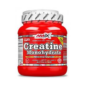 Креатин Amix Nutrition Creatine monohydrate, 500 грамм
