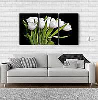 Модульна картина Poster-land Квіти Тюльпани Аrt-86_3А