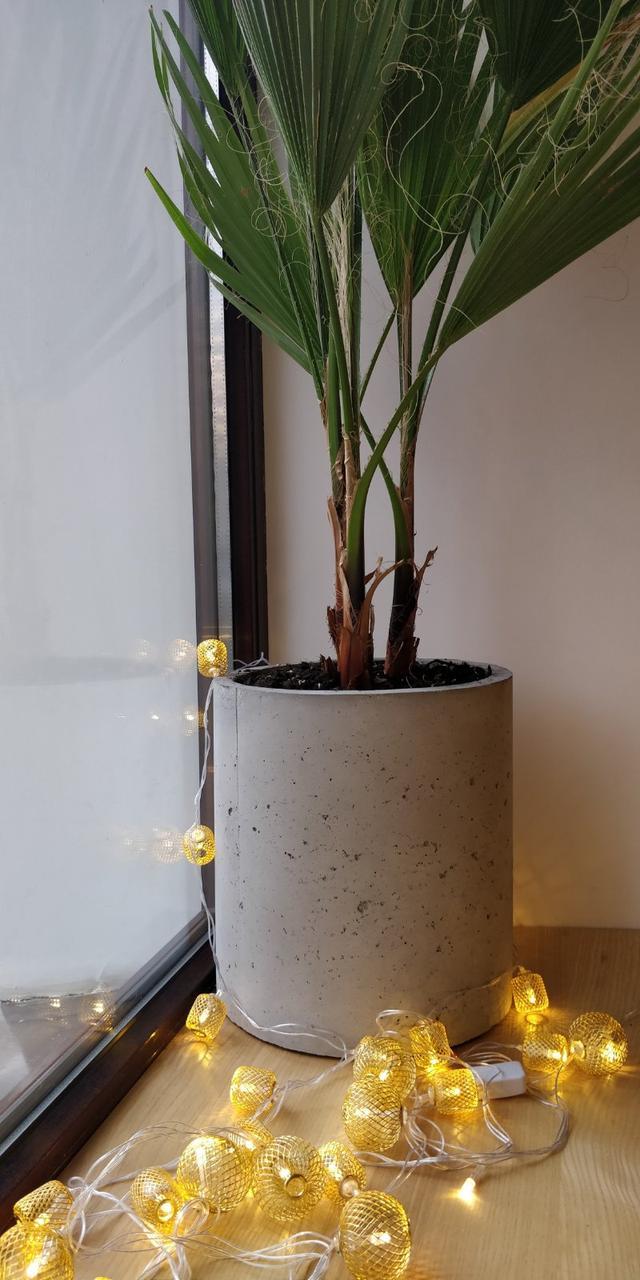Вазон бетонный цилиндр уличный, горшок для сада, дома и террасы