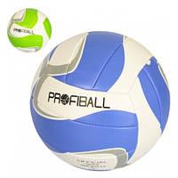 Волейбольный мяч 3289