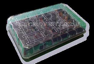 Парничок на 33 ячейки - мини-тепличка, фото 2