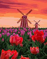 Картина рисование по номерам Идейка Тюльпаны на закате KH2275 40х50 см Пейзаж, природа набор для росписи