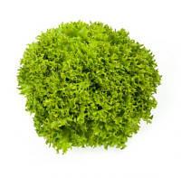 Салат Саланова/свит криспи Эксплора (Explore RZ), зеленый, 5000семян, дражже