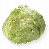 Салат кочанный хрустящий  Платинас (Platinas RZ), 5000 семян (тип Айсберг), дражже