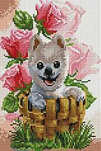 """Набір алмазної мозаїки 20х30 """"Собачка у квітах"""" DT722"""