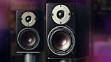 Полочная акустика DALI Oberon 3 Walnut, фото 3