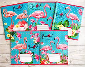 Тетрадь школьная в клеточку Лидер, 12 листов, Фламинго