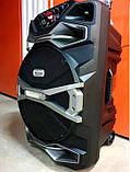 Беспроводная колонка чемодан Ailiang UF-1318AK-DT, 12 дюймовая акустика, комбоусилитель + пульт и микрофон, фото 8