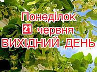 Шановні клієнти! Повідомляємо, що 21 червня (понеділок) ВИХІДНИЙ ДЕНЬ! Бажаємо гарних свят!🌿
