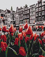 Картина рисование по номерам Brushme Тюльпаны Амстердама BS34169 40 х 50 набор для росписи по цифрам, краски,