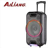 Беспроводная колонка чемодан с микрофоном Ailiang UF-2112, активная уличная акустика NaP, фото 2
