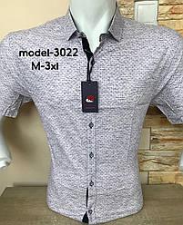 Сорочка  короткий рукав Rewlucci з принтом -3022