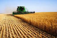 Сучасні технології в агробізнесі