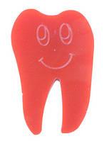 Магнит зуб