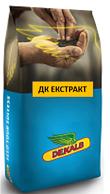 Насіння озимого ріпаку ДК Екстракт (ДК Екстракт)