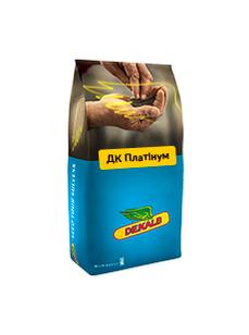 Семена озимого рапса ДК Платинум Монсанта