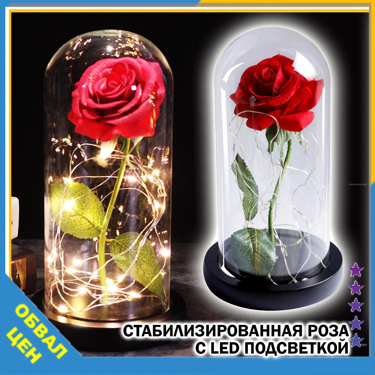 Стабилизированная роза в колбе с led подсветкой вечная долгосвежая цветы ночник подарок на 8 марта