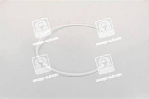 Кольцо уплотнительное газового стыка фторопластовое ЯМЗ 238 (Дорожная Карта) (1 шт.). 2248312800