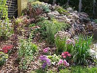системы полива, благоустройство, озеленение,газоны, рулонные газоны,автоматический полив, Rain bird, Hanter