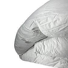 Ковдра двуспальна Євро 200х220см  50% пух,50% перо Ковдра пухова, фото 2