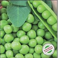 Семена гороха Тиара 2500 семян Ларк сидс