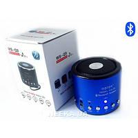 Радиоприемник колонка с Bluetooth WSTER WS-Q9
