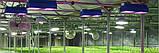 Линейный Фито светильник Samsung LM301B  52W 120см, фото 3