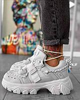 Взуття Кліпса Білі, фото 1