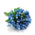 Сложные тычинки синие